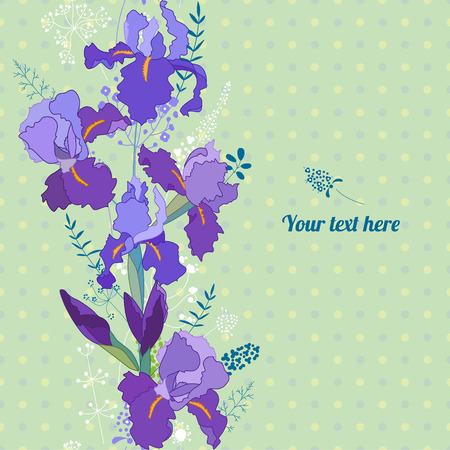 bunches: Floral spring template with cute bunches of irises. For romantic design, announcements, greeting cards, posters, advertisement.