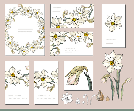 Daffodil set with visit cards and greeting templates. Illusztráció