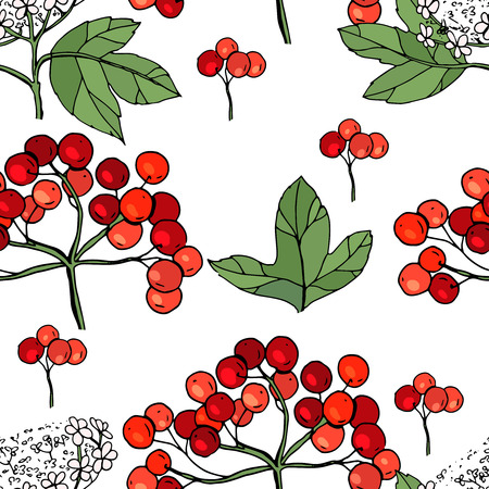 Viburnum seamless pattern, endless texture with red ripe berries. Illusztráció