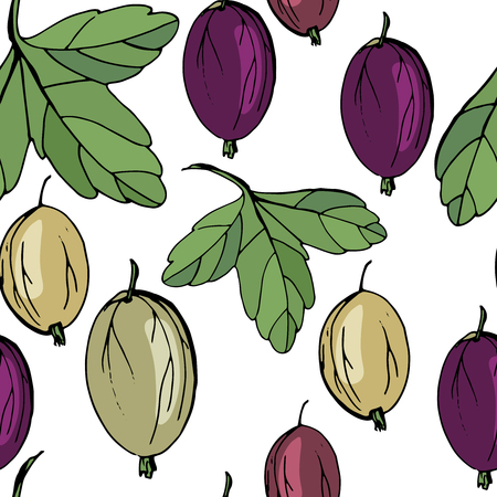 Gooseberry seamless pattern, endless texture with ripe tasty berries.