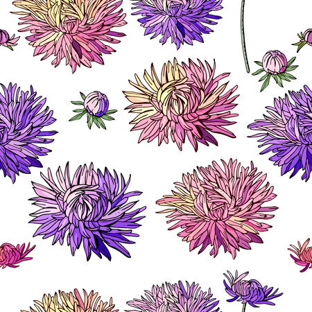 Seamless pattern with asters.