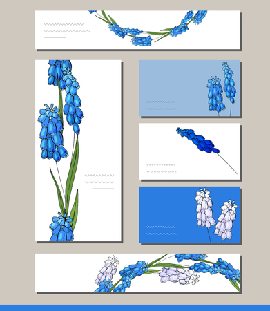 Muscari set with visitcards and greeting templates Ilustracja