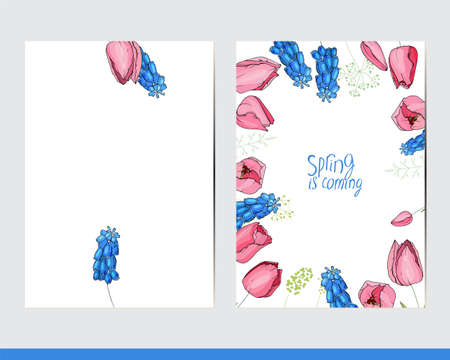 Greeting cards with floral elements and decoration. Decor with tulips and muscari