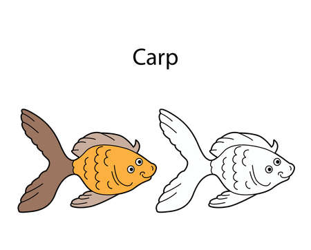 Funny cute fish carp isolated on white background. Linear, contour, black and white and colored version. Illustration can be used for coloring book and pictures for children