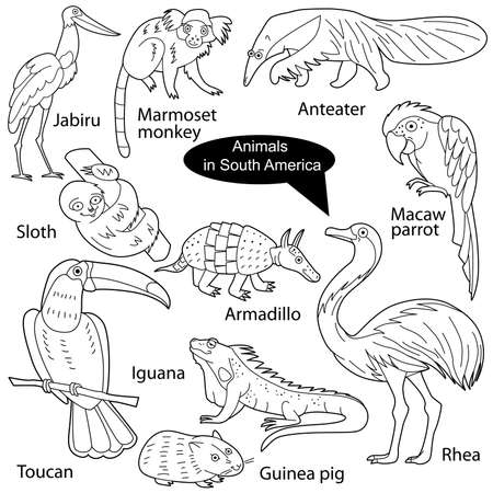 Set with funny cute animals living in South America. Objects isolated on white background. Linear, black and white version. Illustration can be used for coloring book and pictures for children