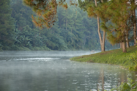beautiful scenery - mist on the lake in morning