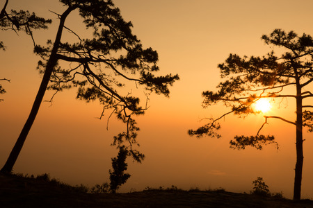 silhouette of serenely the cliff at the valley and mountains with sunrise in the morning - selective focus.