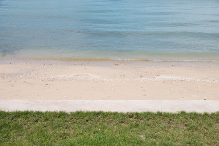 tropical beach of sea with green grass
