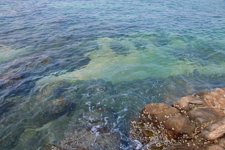 sea and beach with stone at coast
