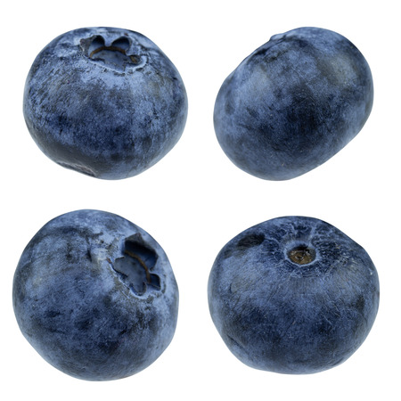 blueberry isolated on white background - clipping path