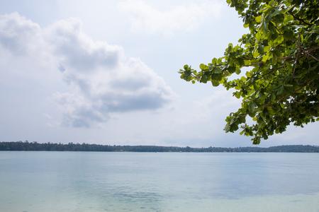 beautiful scene, tropical sea and beach