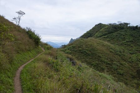 walkway on the mountain  Stockfoto