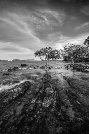 Black White Panorama Photos of wonderful indonesia