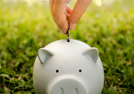 Money Saving with white piggy, coin and hand on green grass background for business, investment and advertisement Reklamní fotografie