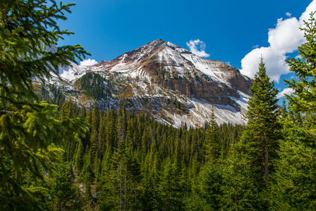 Mountain summit with forest and blue sky, Colorado Stock Photo
