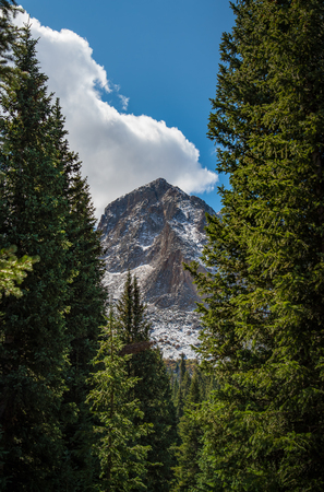 mt hood national forest: Mountain summit with forest and blue sky in Colorado Stock Photo