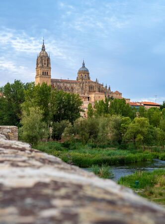 Toledo's Church view from the bridge and park in Spain.