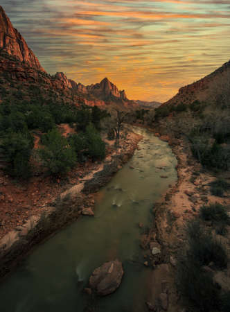 Vertical of Zion National Park with river flow in sunset 版權商用圖片