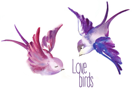 Watercolor painted birds in love. valentines Day. Raster Illustration on white background.