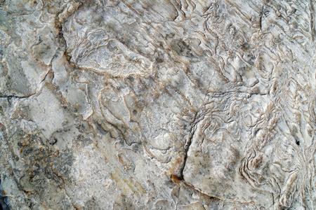 Stone tiles texture 免版税图像