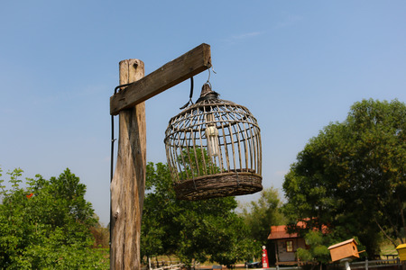 wooden post: bird cage lamp on wooden post
