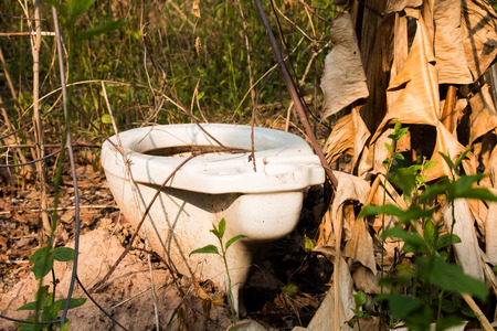 latrine: Nothing outdoor latrine in the forest cover.
