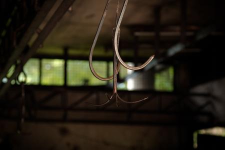 Pig Hook in slaughterhouse