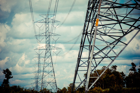 electric grid: High-voltage power lines in rice fields Stock Photo