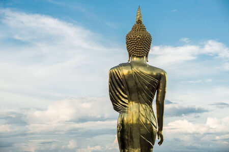 behind the buddha photo
