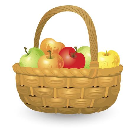 panier en osier pleine de pommes isolé sur fond blanc. vecteur