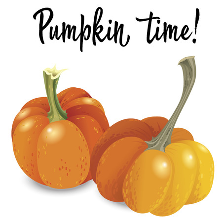 Two orange pumpkin illustration, Illustration