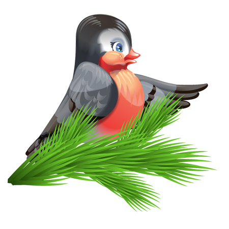 Vector image of a bullfinch on a spruce branch.