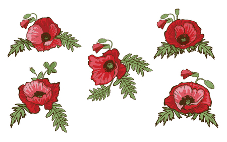 Set of hand drawn red poppies isolated on white background. Buds and flowers. Botanical vector. Floral elements for your design. Çizim