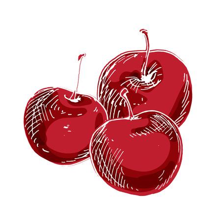 Drei köstliche reife Kirschen lokalisiert auf weißem Hintergrund. Vektorillustration