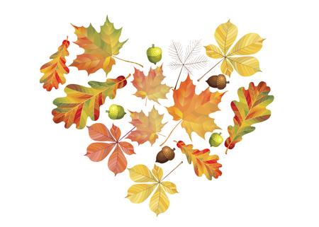 Corazón de coloridas hojas de otoño aisladas sobre fondo blanco. Estilo plano de dibujos animados simple. Ilustración vectorial