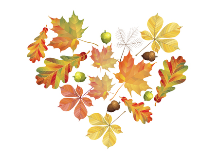 Heart of colorful autumn leaves isolated on white background. Simple cartoon flat style. Vector illustration Ilustrace