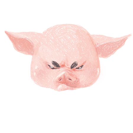 Adorable pig character is angry. Cute little piglet face isolated on white background. Pig emotion collection. Vector hand draw illustration