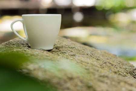 black coffee in white ceramic cup on rock in nature