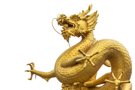 dragon: Gold dragon scrulpture on white background