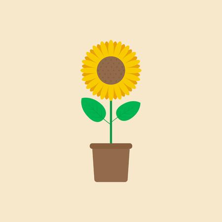 Sunflower in flower pot flat design - Vector