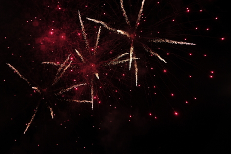 celebration background beautiful colorful firework on night sky scene. image for festival, holiday, explosion, isolated concept