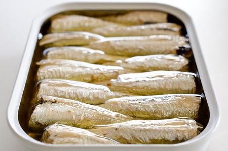 oiled: Oil sardines