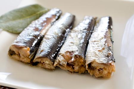 sardinas: sardinas petr�leo Foto de archivo