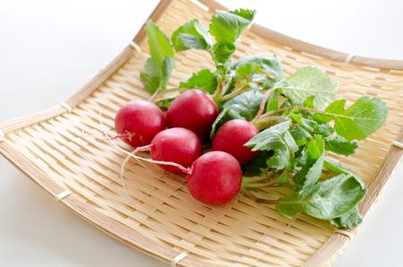 radish: Radish Stock Photo