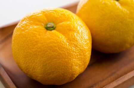 Citron 免版税图像