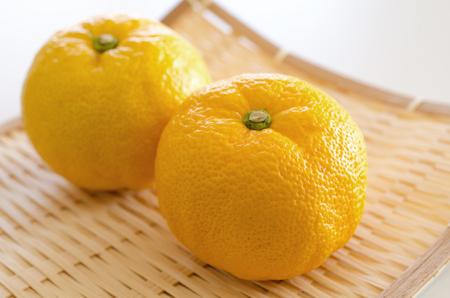 citron: Citron Stock Photo