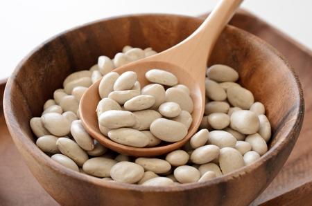 白インゲン豆 写真素材