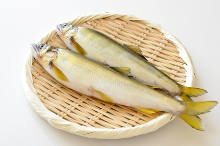 Fresh fish. Food and ingredients Stock Photo