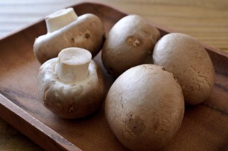 mushrooms Banco de Imagens