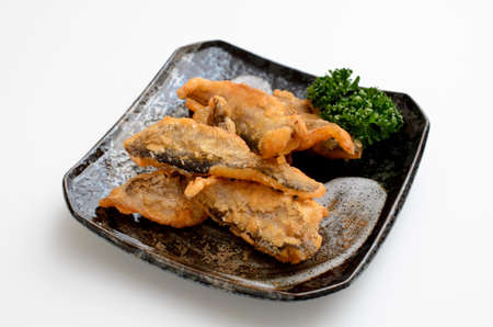 fried sailfin sandfish 版權商用圖片
